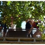 stammeslager_2011-10-01_14-26-29_0040