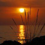 sommerlager_2012-07-04_20-30-22_0432