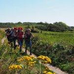 sommerlager_2015.08.18_12-31-18_0328